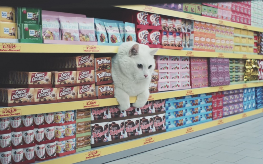 Supermarcats by Netto Cats Video Advertisement Film Werbung funny inspiration design Mindsparkle Mag
