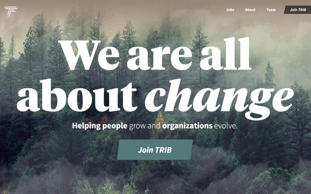 TRIB Talent Agency website webdesign sotd award cool new online inspiration design Mindsparkle Mag
