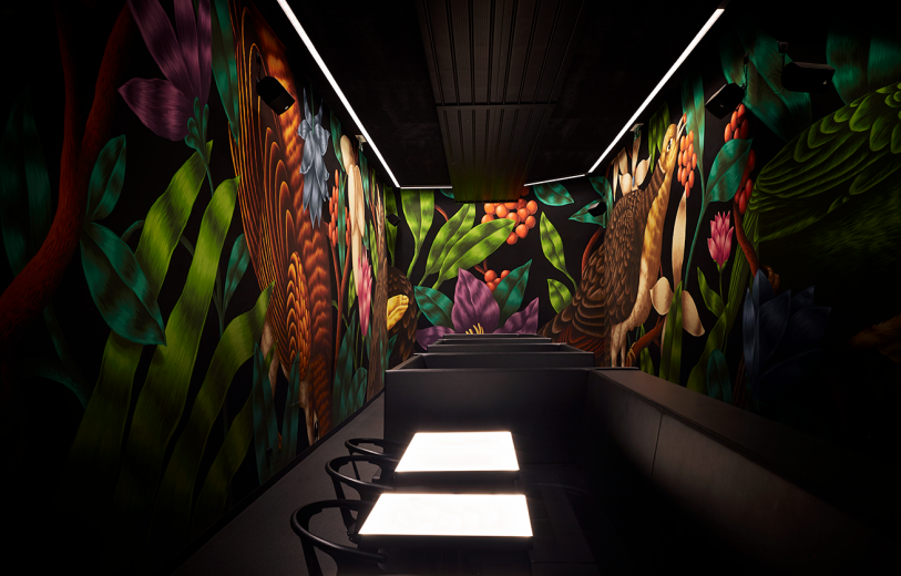 The Birdyard Murals Saddo mindsparkle mag