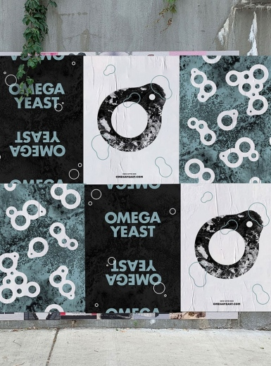 omega yeast design identity graphic blog project mindsparkle mag beautiful portfolio