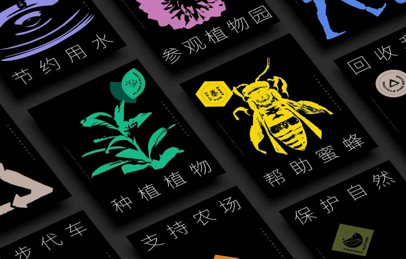 8 WAYS TO PROTECT BIODIVERSITY design identity graphic blog project mindsparkle mag beautiful portfolio